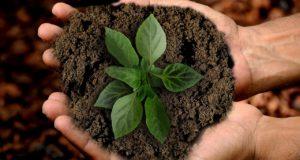 Checkliste nachhaltige Geldanlage
